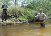 Stream Analysis During Lampricide Treatment