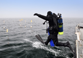 Scuba Diver Enters Water