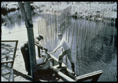 Fish Passage, Old Electric Sea Lamprey Barrier