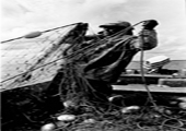 Fisherman Pulling in Nets, Historical